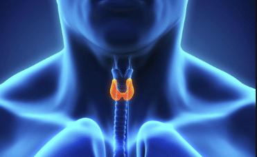 Endrocine Surgery in India