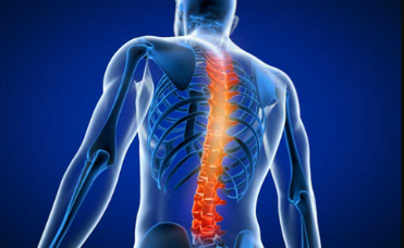Spine and Joint Surgery in India