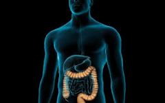 Gastro Surgery