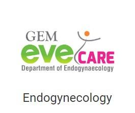 Endogynecology